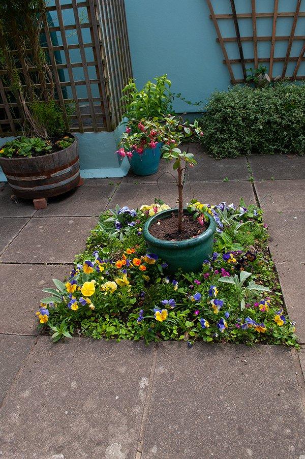 garden_image_tudor_900
